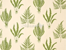 WOODLAND FERNS DAPGWO202